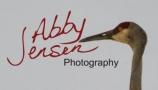 Abby Jensen logo