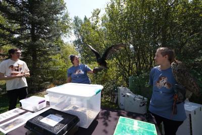 Nature's Educators Booth