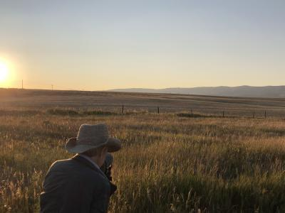 sunset crane-viewing