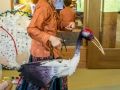 Crane puppet