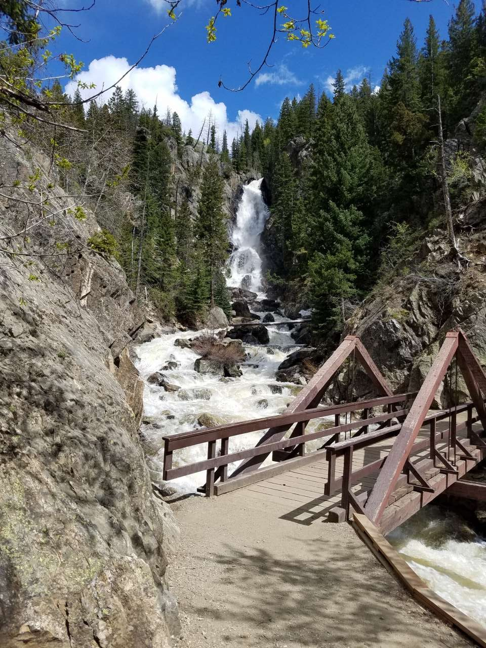 Guided bird walk 2 fish creek falls saturday 7 30 9 for Fish creek falls
